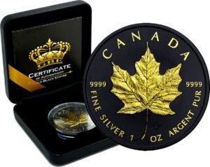 Kanadskij klenovyj list 1 300x239 - Канадский кленовый лист