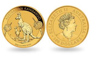 kangaroo gold australia 2020 300x193 - kangaroo-gold-australia-2020