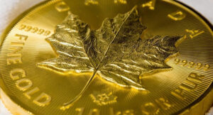 klenovyj list zoloto 300x162 - кленовый лист золото